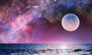 lunar life